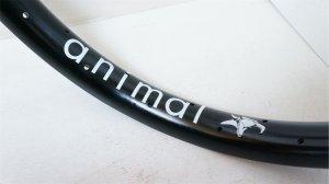 """画像1: Animal """"Steam Roller """" Rim [Black/36H]"""